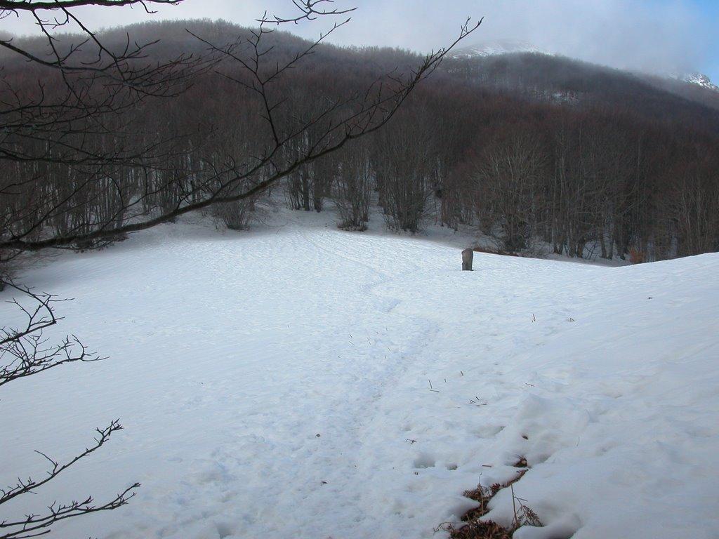 El coll Pregón nevat.