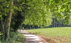 Via Verda del Carrilet I: Olot-Girona