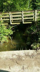Pont sobre torrent del Puig
