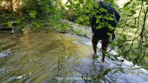 Travessant el rec damunt del saltant