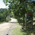 Hortsavinyà - Vallgorguina