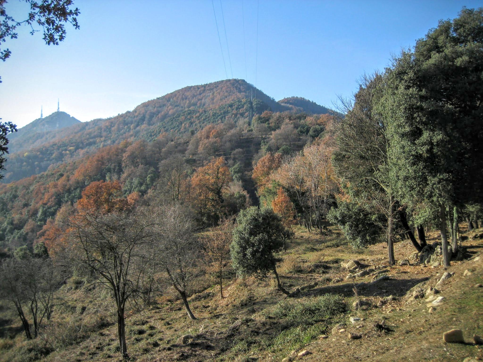 Puig de Comaestramer