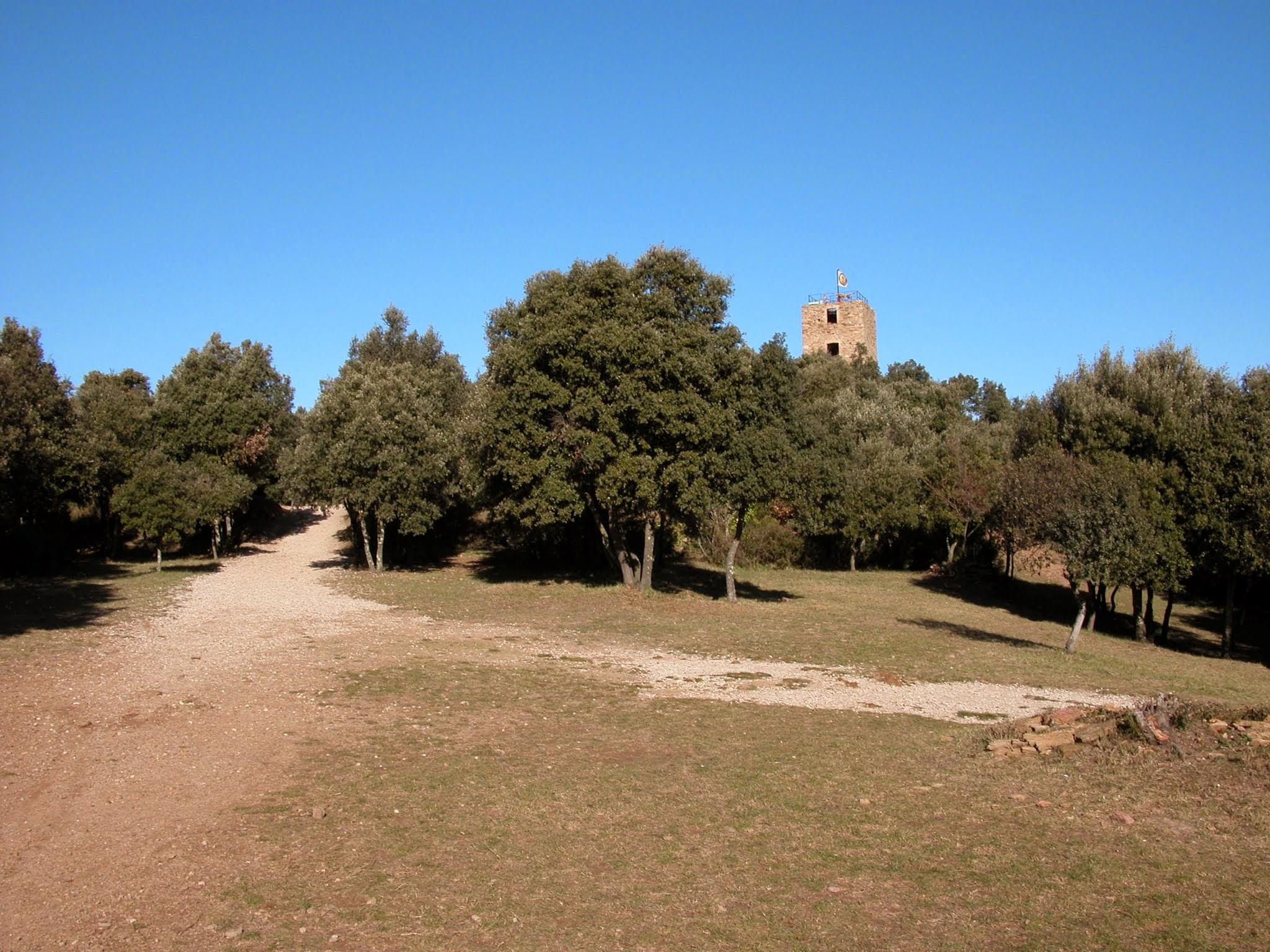 Puig de Sant Miquel