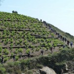 Banyuls-Sur-Mer - Portbou